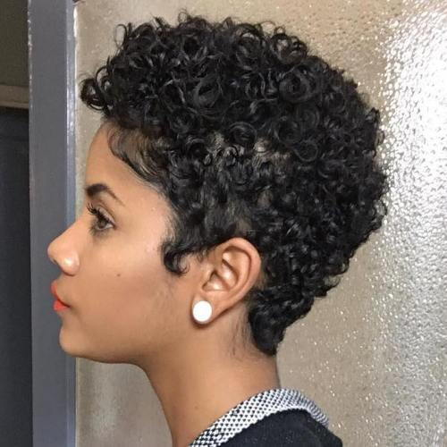 afrički American Short Natural Hairstyle